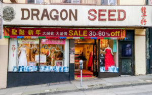 dragonseed_01